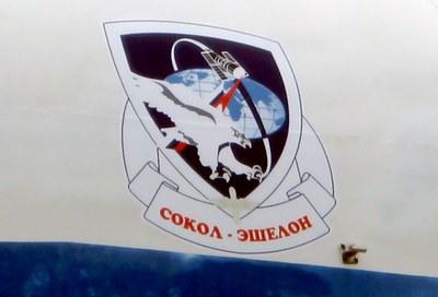 Falcon Echelon insignia